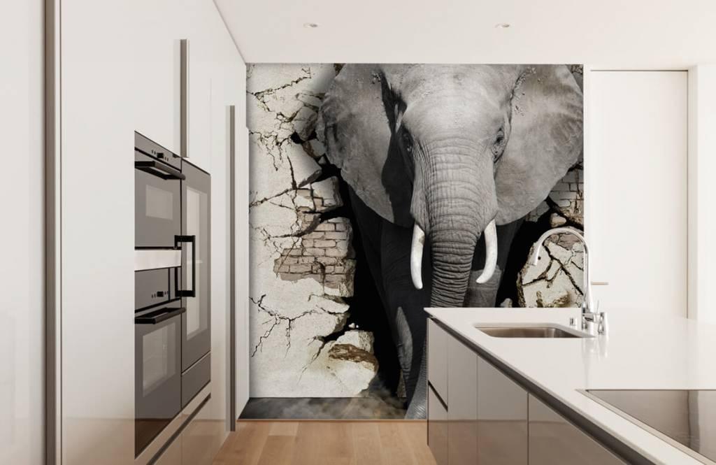 Animaux - L'éléphant en 3D depuis le mur - Chambre d'adolescent 1