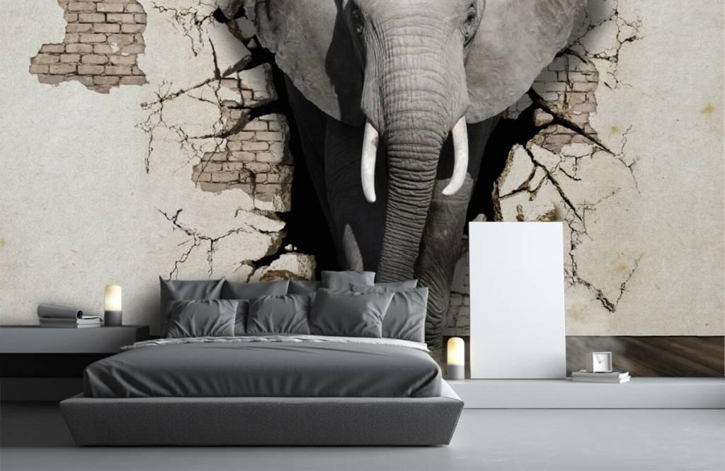 Animaux - L'éléphant en 3D depuis le mur - Chambre d'adolescent 2