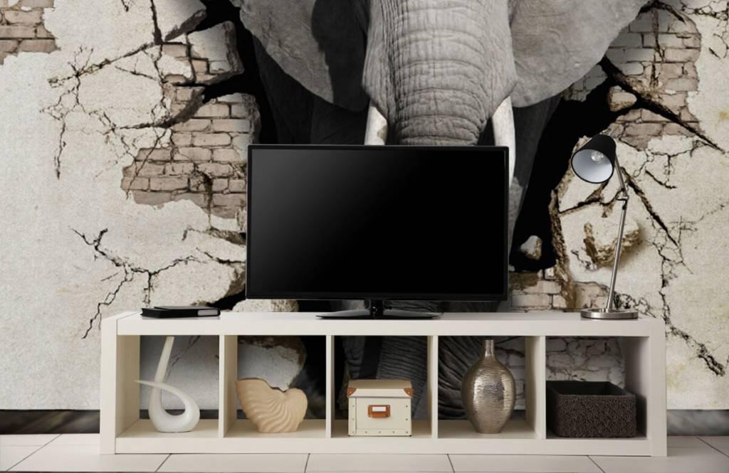 Animaux - L'éléphant en 3D depuis le mur - Chambre d'adolescent 3