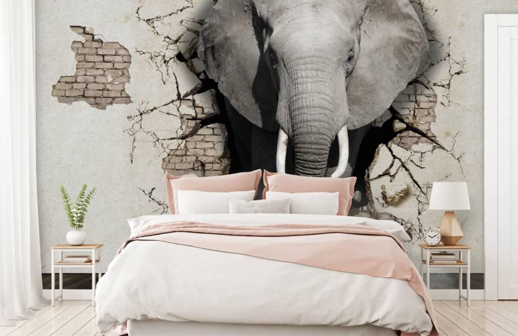 Animaux - L'éléphant en 3D depuis le mur - Chambre d'adolescent 4