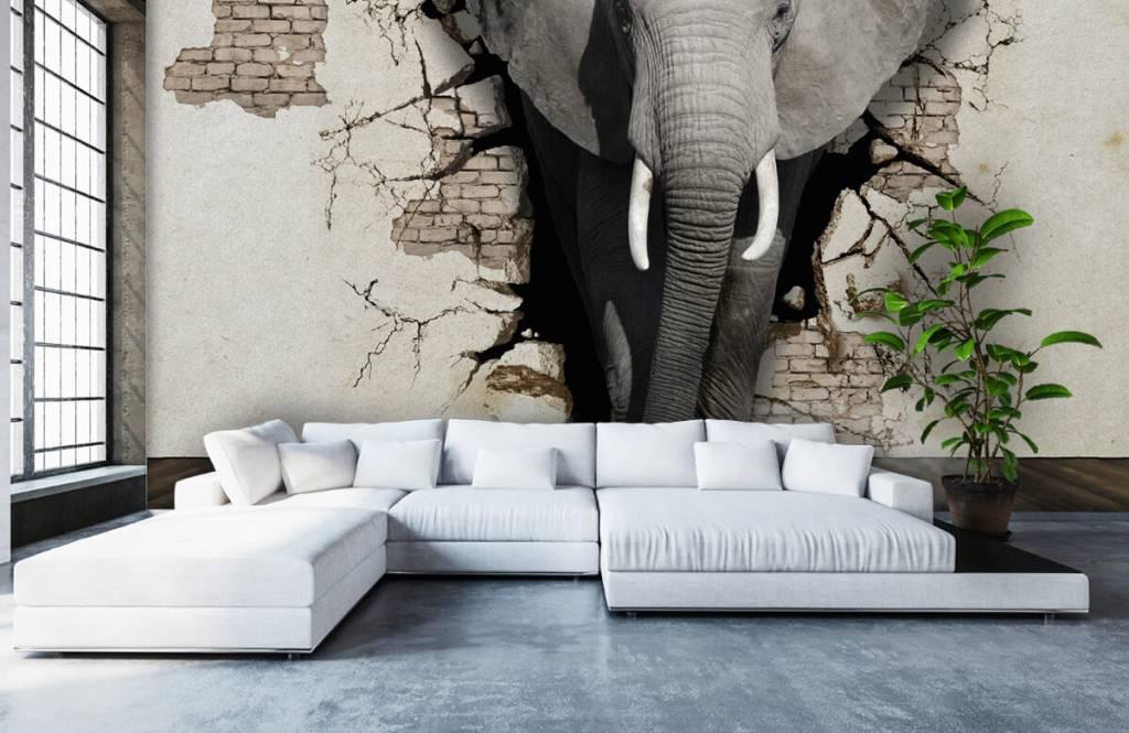 Animaux - L'éléphant en 3D depuis le mur - Chambre d'adolescent 5