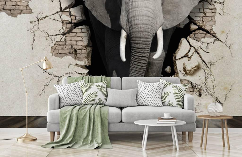 Animaux - L'éléphant en 3D depuis le mur - Chambre d'adolescent 7