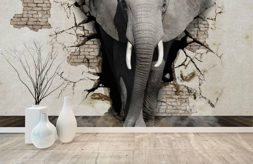 Animaux - L'éléphant en 3D depuis le mur - Chambre d'adolescent 8