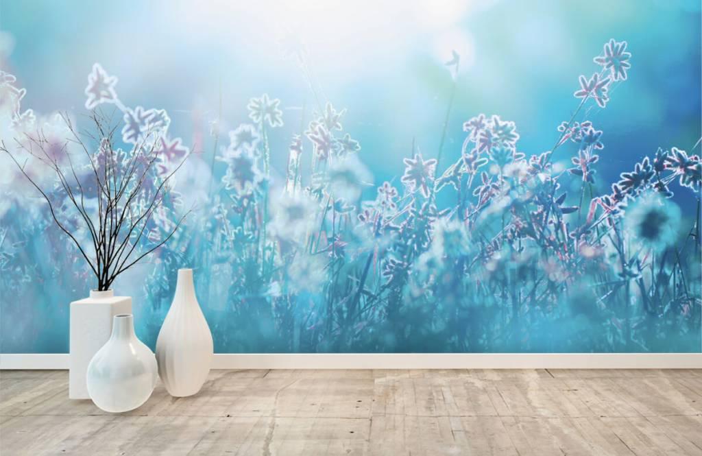 Champs fleuris - Fleurs au soleil - Chambre à coucher 1