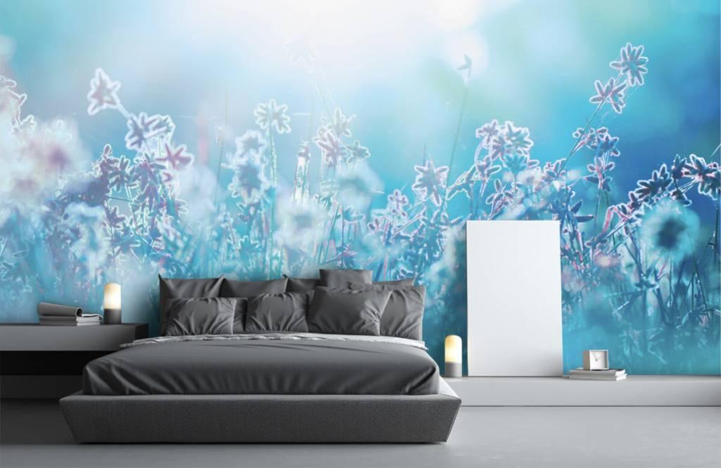 Champs fleuris - Fleurs au soleil - Chambre à coucher 5