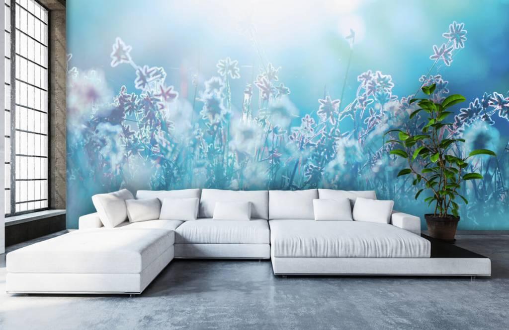 Champs fleuris - Fleurs au soleil - Chambre à coucher 6