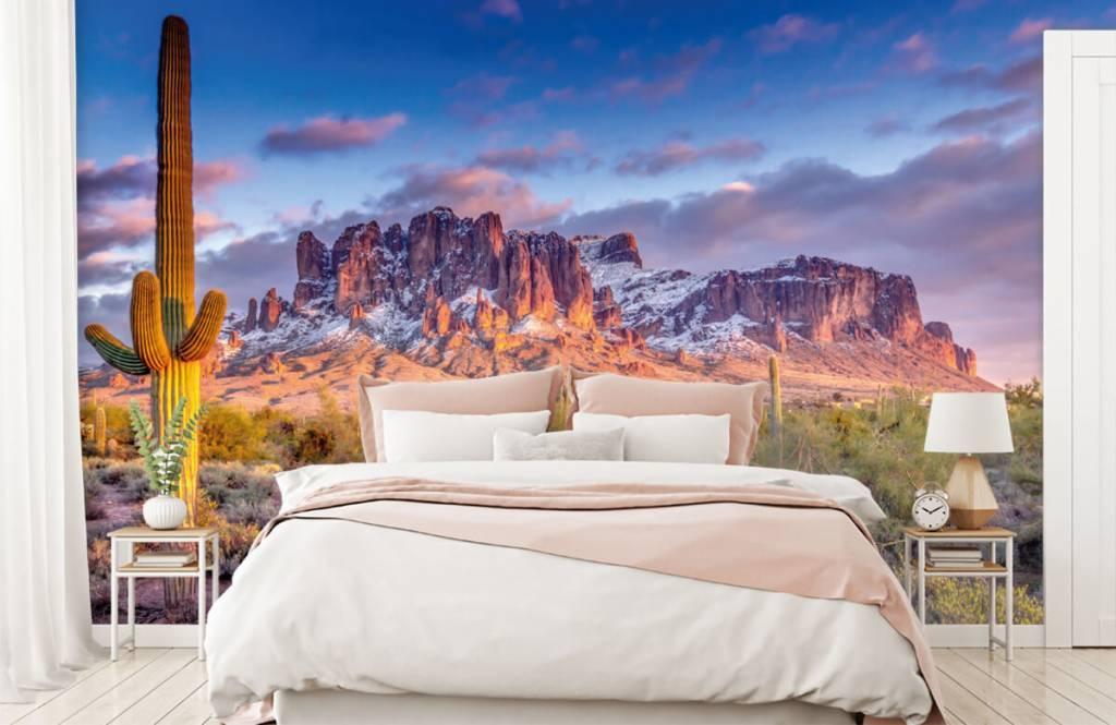Montagnes - Cactus dans un paysage de montagne - Salle de séjour 3