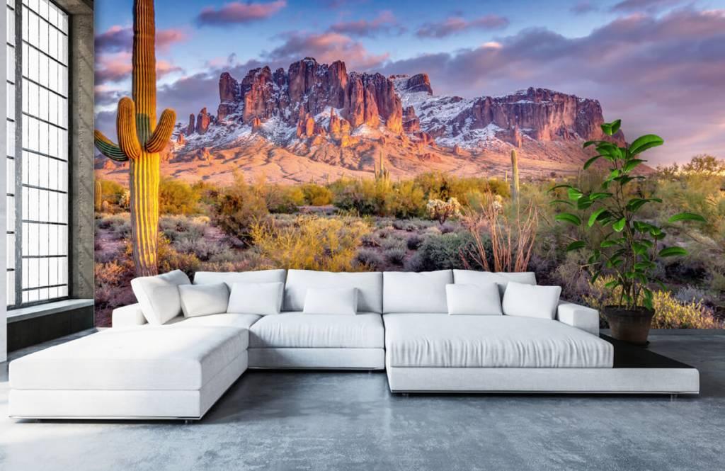 Montagnes - Cactus dans un paysage de montagne - Salle de séjour 6