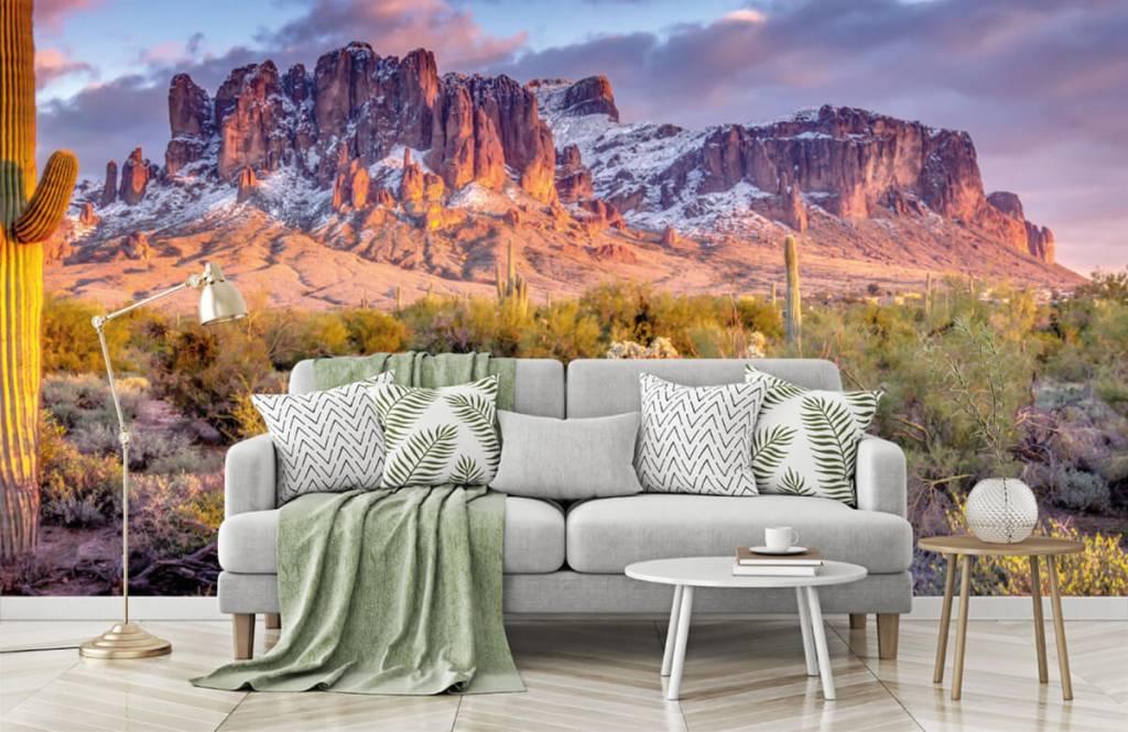 Montagnes - Cactus dans un paysage de montagne - Salle de séjour 8