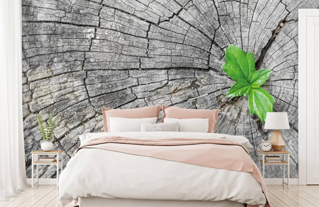 Papier peint bois - Diamètre d'un tronc d'arbre - Chambre à coucher 4