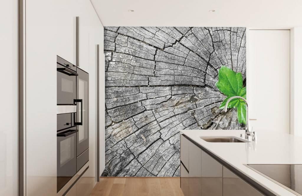 Papier peint bois - Diamètre d'un tronc d'arbre - Chambre à coucher 6