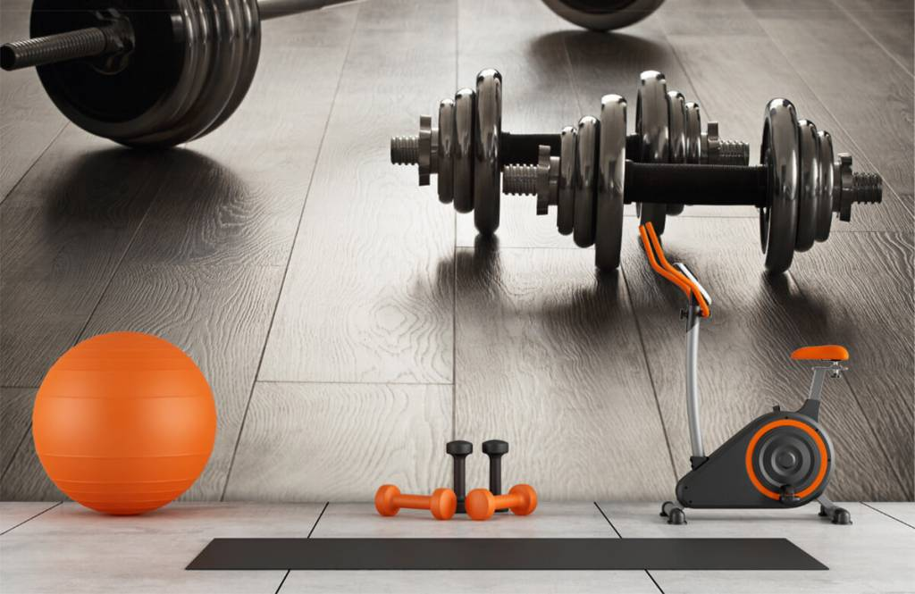 Fitness - Haltères et poids - Salle de Loisirs 1