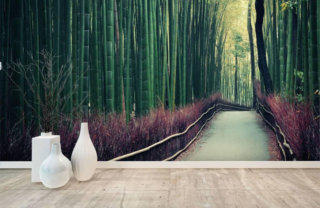 Papier peint de la forêt - Forêt de bambous - Hall d'entrée 8
