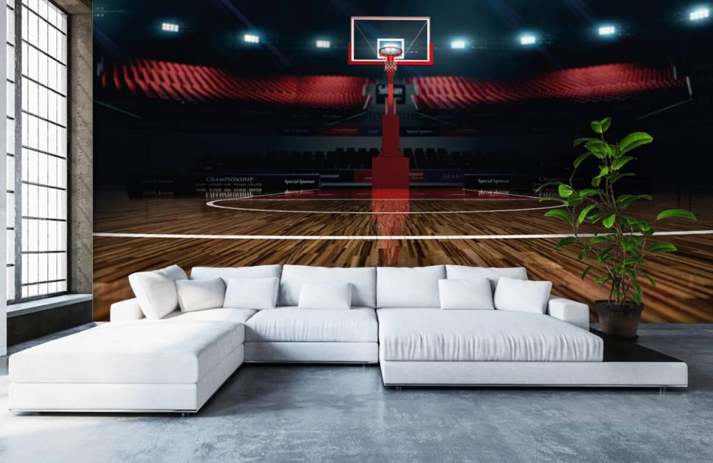 Autre - Aréna de basket-ball - Salle de Loisirs 6