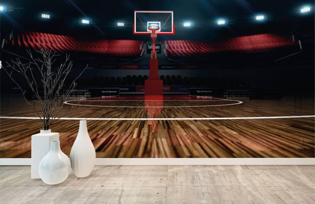 Autre - Aréna de basket-ball - Salle de Loisirs 8