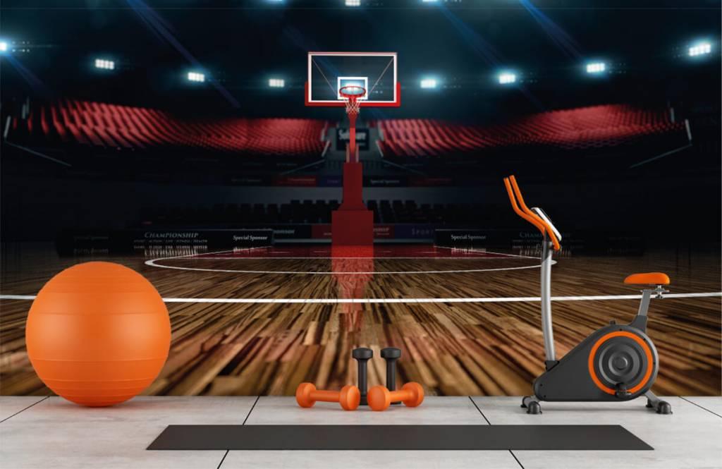 Autre - Aréna de basket-ball - Salle de Loisirs 9
