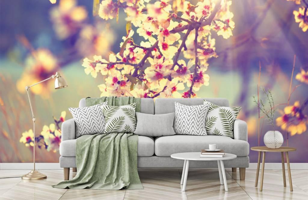 Bourgeon - Arbre à fleurs - Chambre à coucher 1