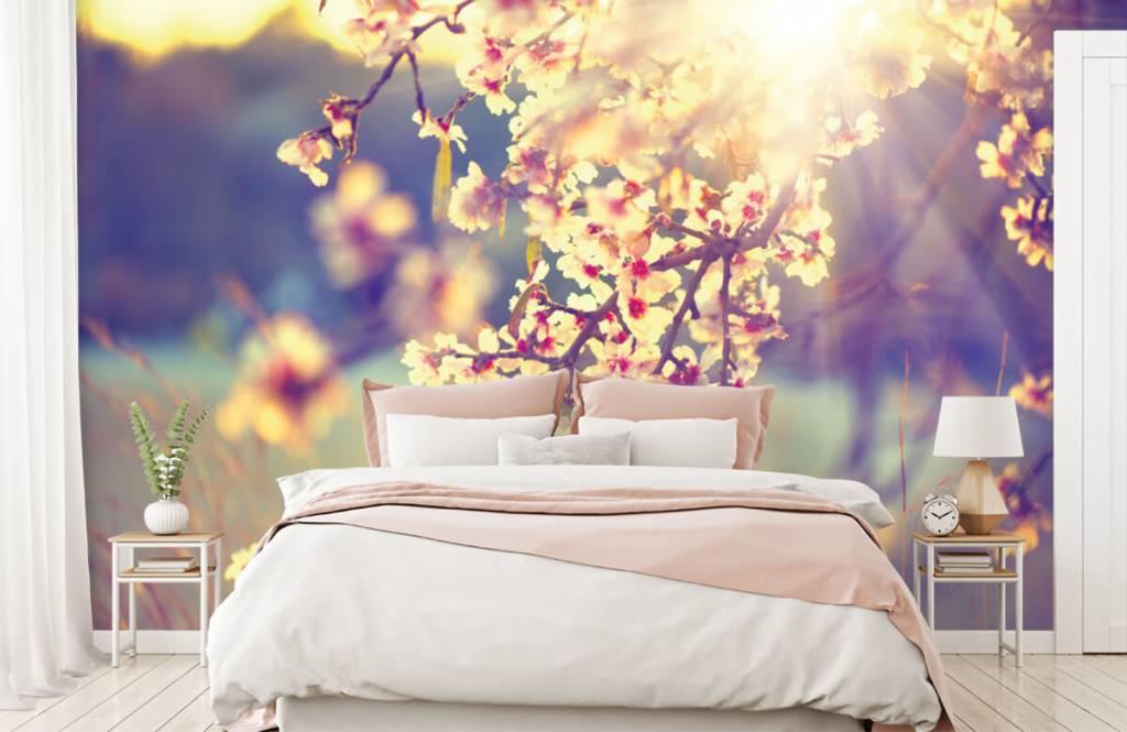 Bourgeon - Arbre à fleurs - Chambre à coucher 2