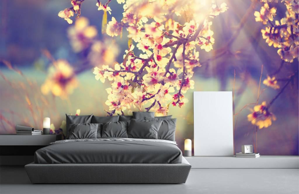 Bourgeon - Arbre à fleurs - Chambre à coucher 3