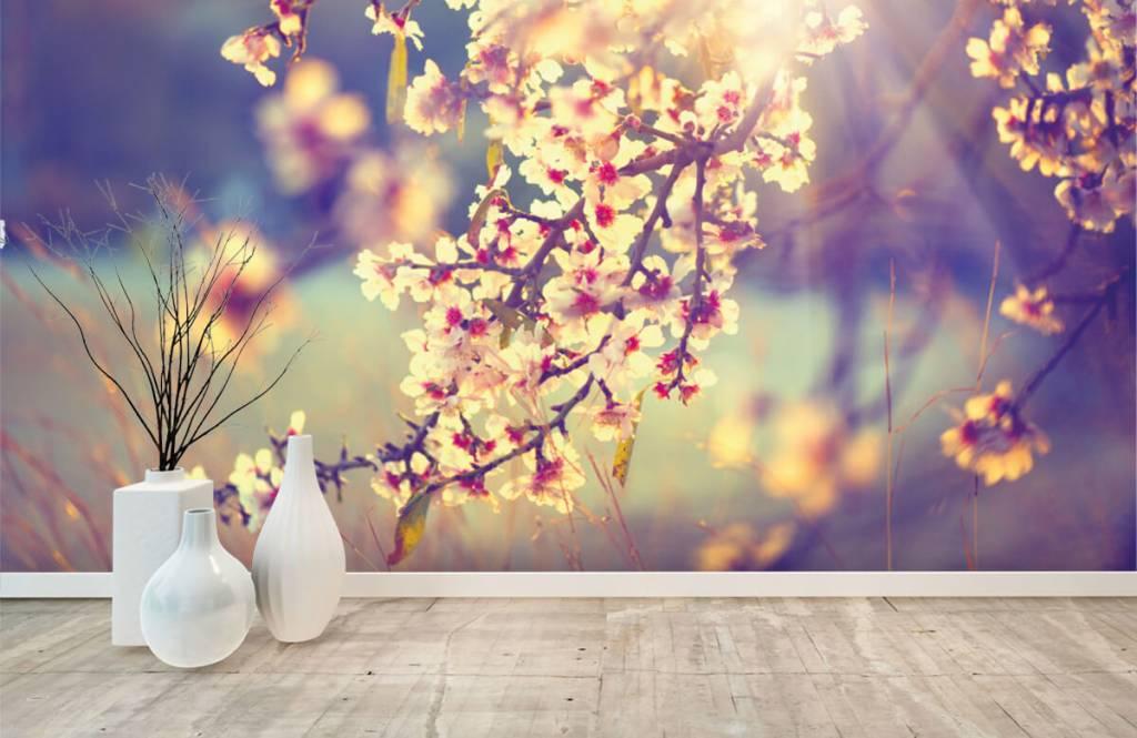 Bourgeon - Arbre à fleurs - Chambre à coucher 8