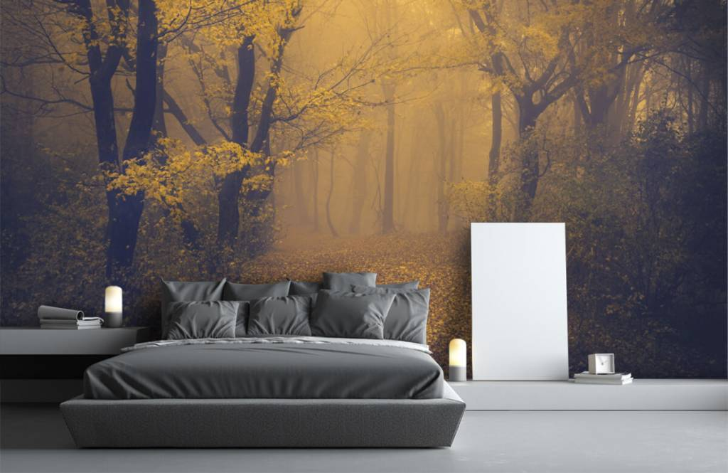 Papier peint de la forêt - Forêt sombre - Chambre à coucher 3