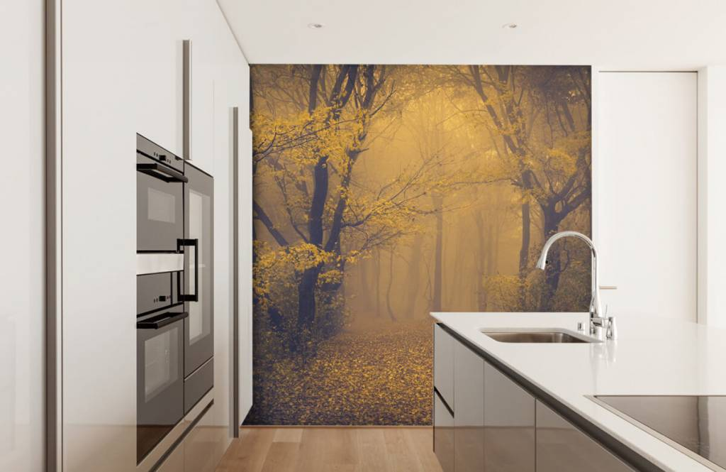Papier peint de la forêt - Forêt sombre - Chambre à coucher 4