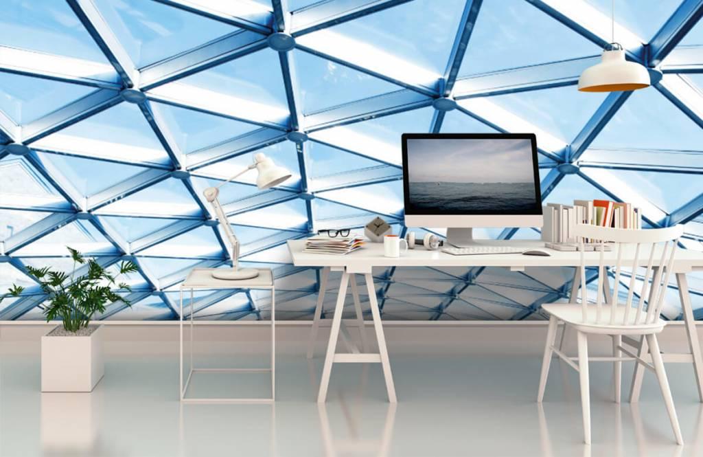 Bâtiments - Plafond en verre - Hall d'entrée 3