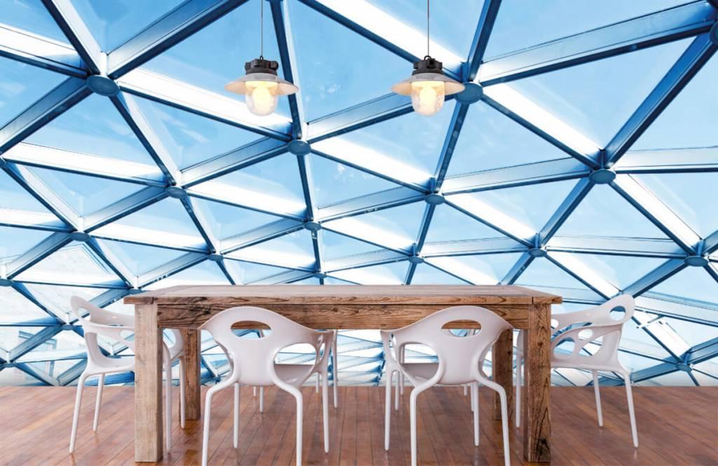 Bâtiments - Plafond en verre - Hall d'entrée 6