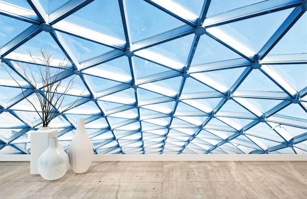 Bâtiments - Plafond en verre - Hall d'entrée 7