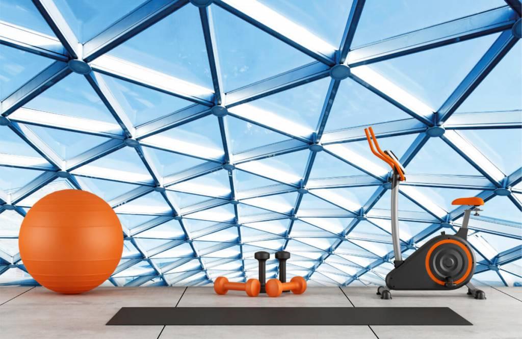 Bâtiments - Plafond en verre - Hall d'entrée 8