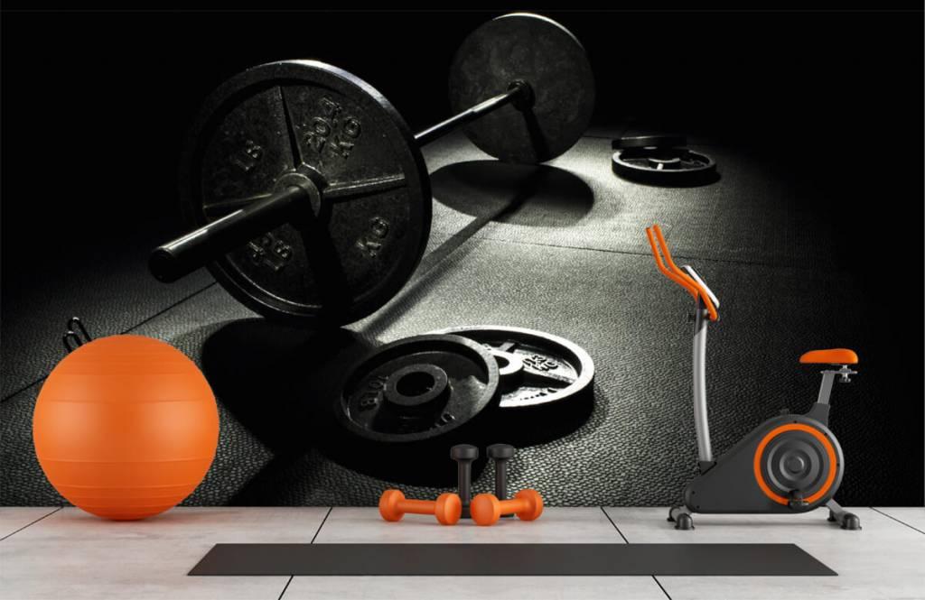 Fitness - Poids haltère - Salle de Loisirs 1