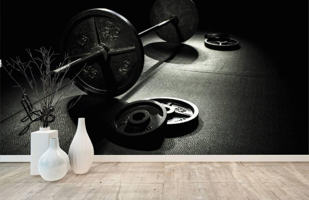 Fitness - Poids haltère - Salle de Loisirs 3