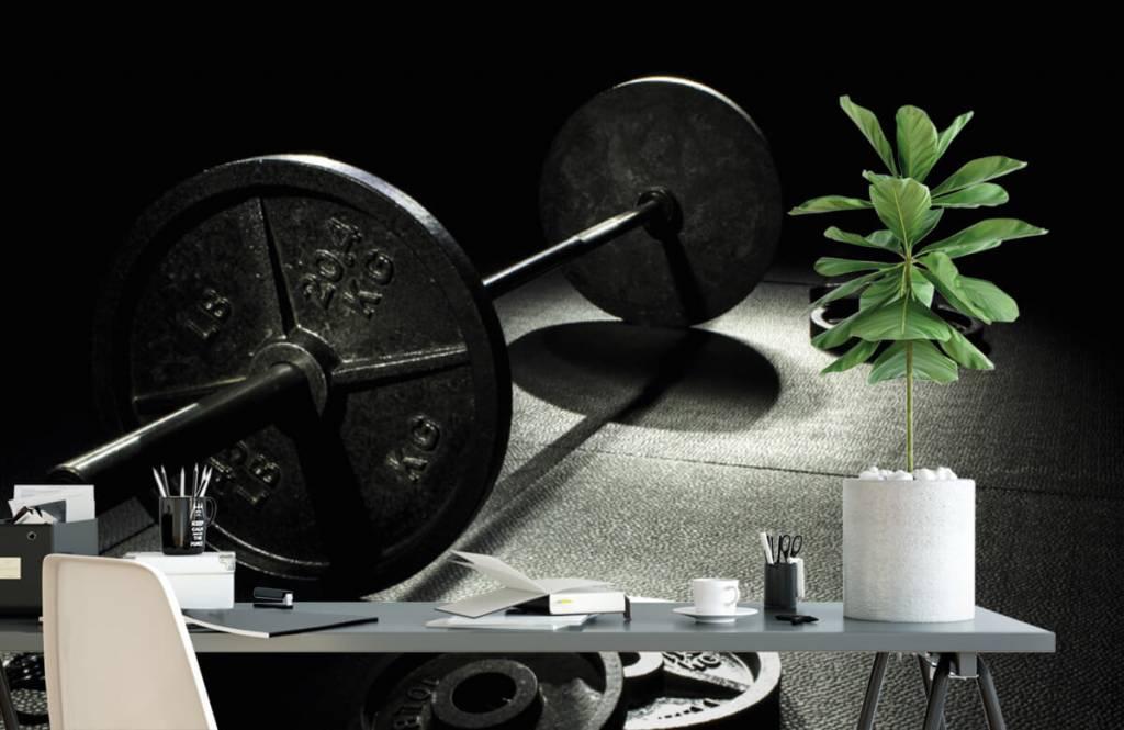 Fitness - Poids haltère - Salle de Loisirs 5