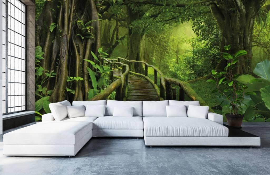 Arbres - Pont en bois à travers une jungle verte - Chambre à coucher 1