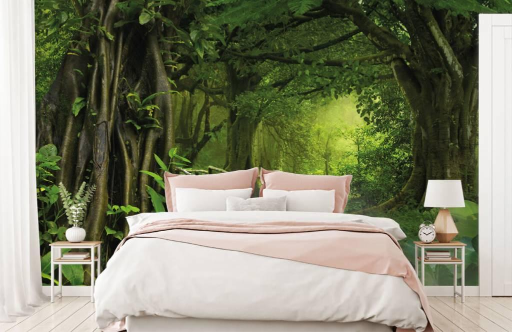 Arbres - Pont en bois à travers une jungle verte - Chambre à coucher 2