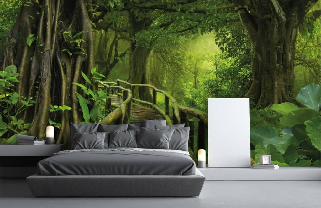 Arbres - Pont en bois à travers une jungle verte - Chambre à coucher 3