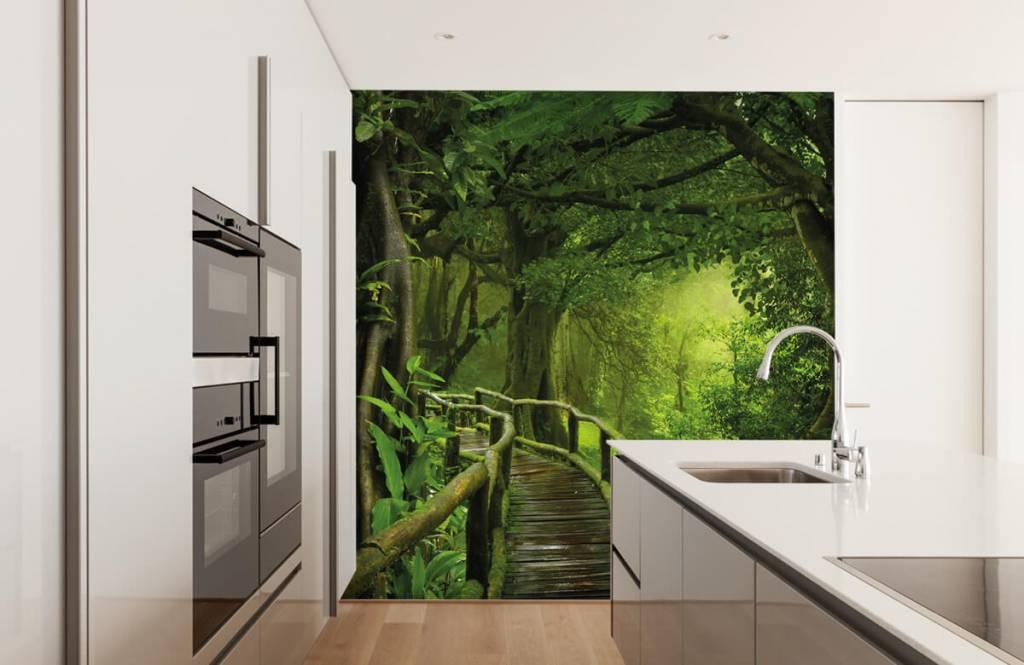 Arbres - Pont en bois à travers une jungle verte - Chambre à coucher 4