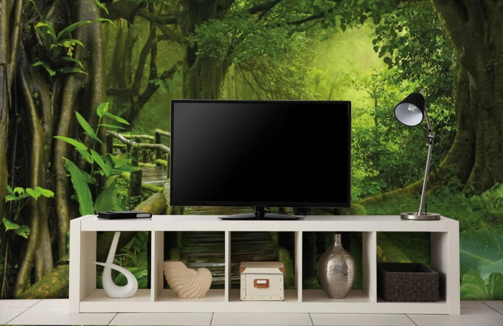 Arbres - Pont en bois à travers une jungle verte - Chambre à coucher 5