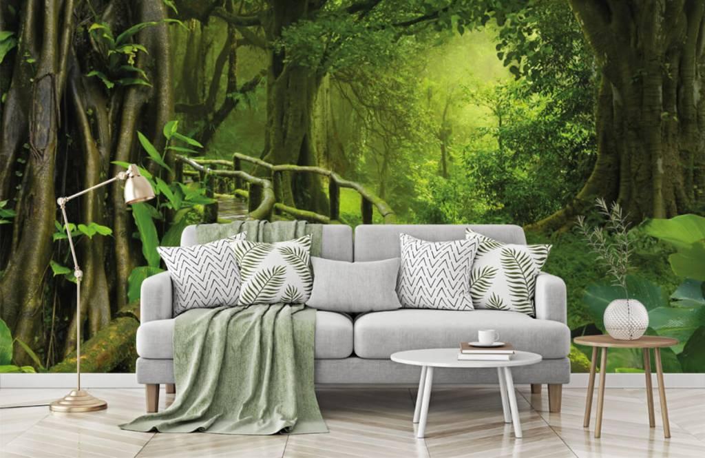 Arbres - Pont en bois à travers une jungle verte - Chambre à coucher 7