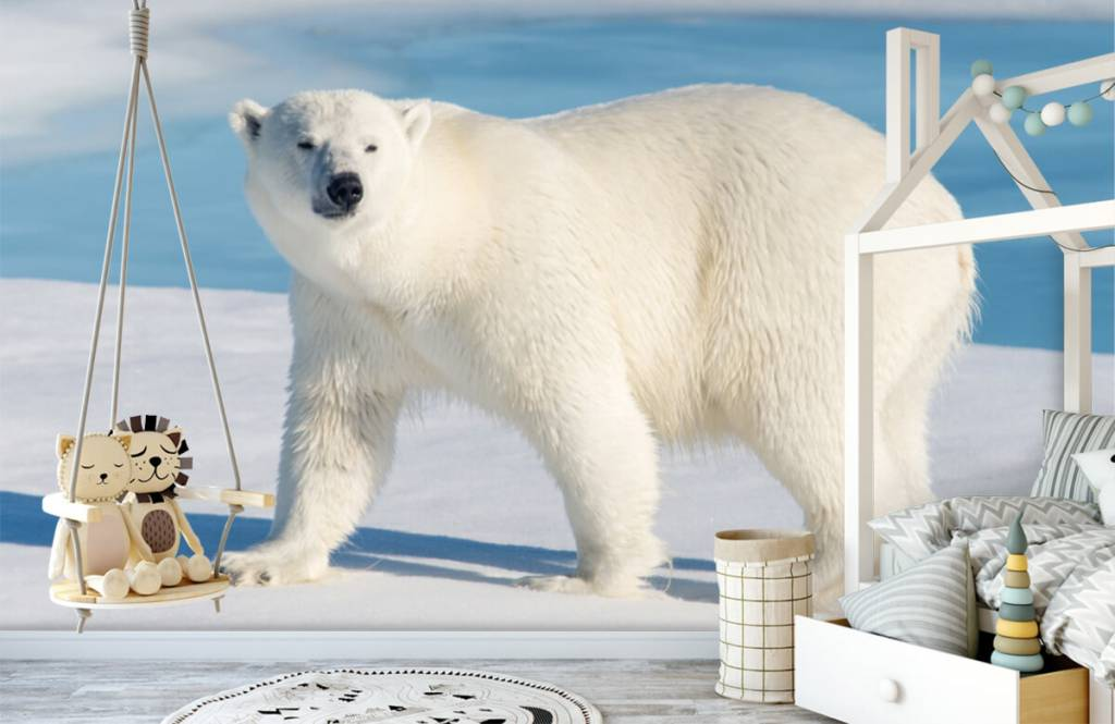 Autre - Ours polaire - Chambre d'enfants 3