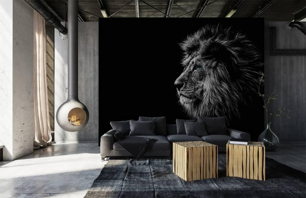 Animaux de Safari - Lion aux yeux bleus - Chambre d'adolescent 1