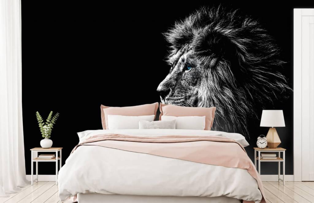 Animaux de Safari - Lion aux yeux bleus - Chambre d'adolescent 2
