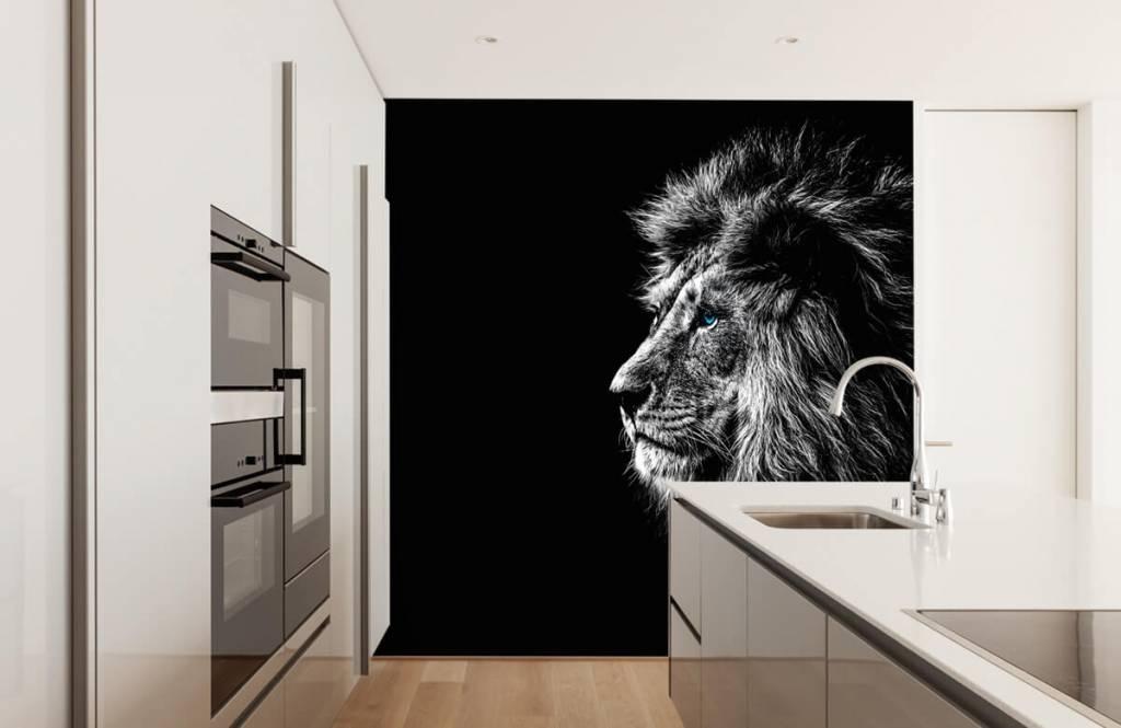 Animaux de Safari - Lion aux yeux bleus - Chambre d'adolescent 4
