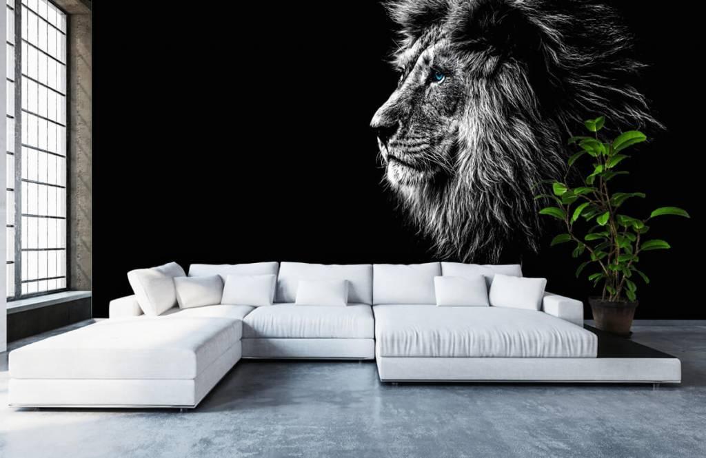 Animaux de Safari - Lion aux yeux bleus - Chambre d'adolescent 6