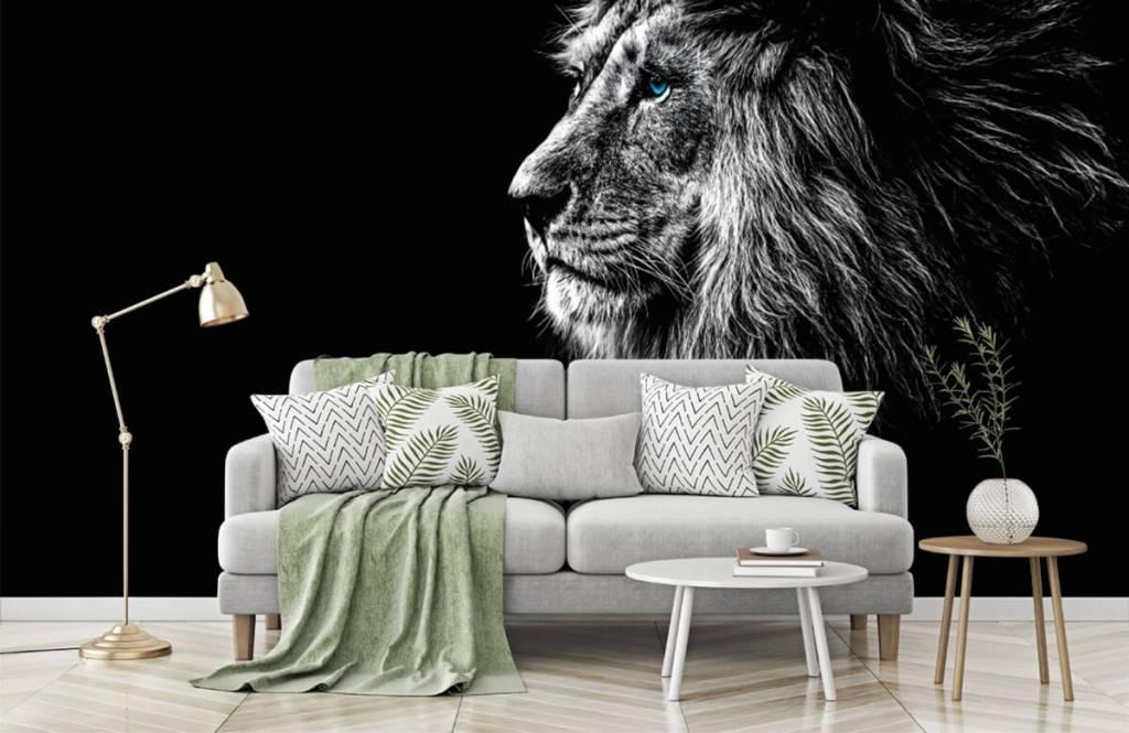 Animaux de Safari - Lion aux yeux bleus - Chambre d'adolescent 7