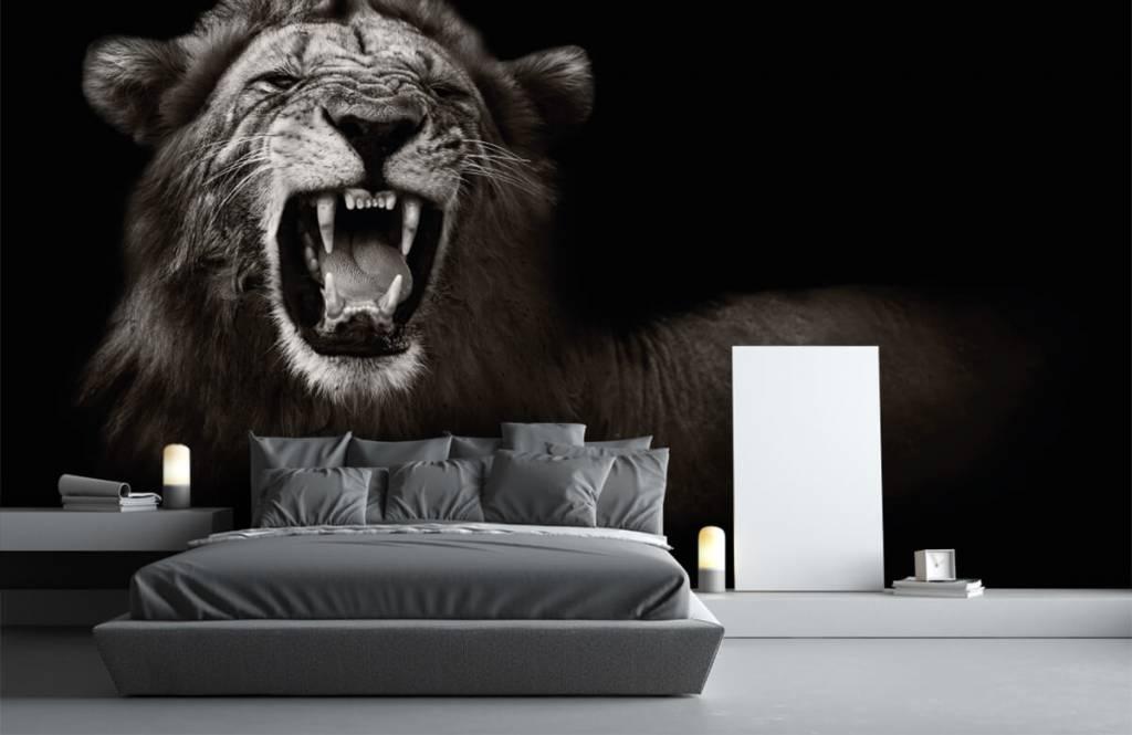 Animaux sauvages - Lionne - Chambre d'adolescent 3
