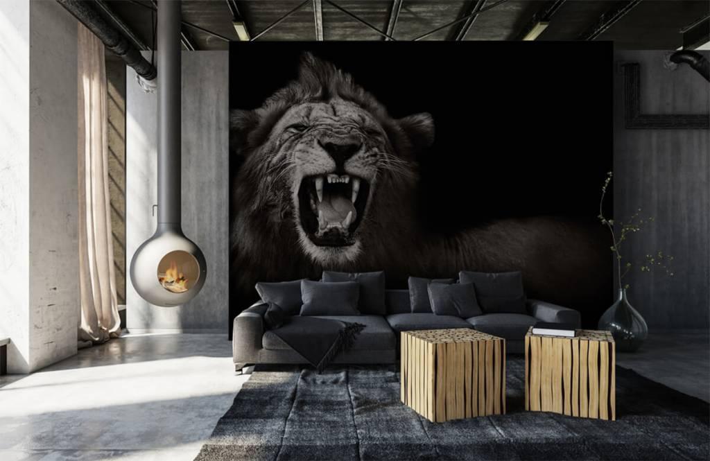 Animaux sauvages - Lionne - Chambre d'adolescent 6