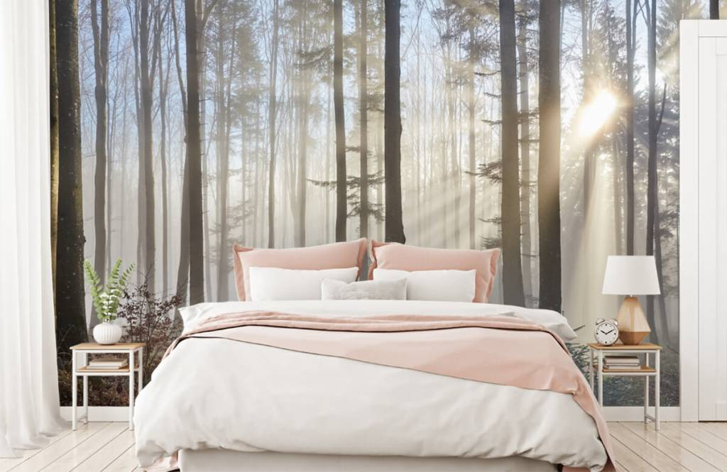 Papier peint de la forêt - Forêt brumeuse - Chambre à coucher 1