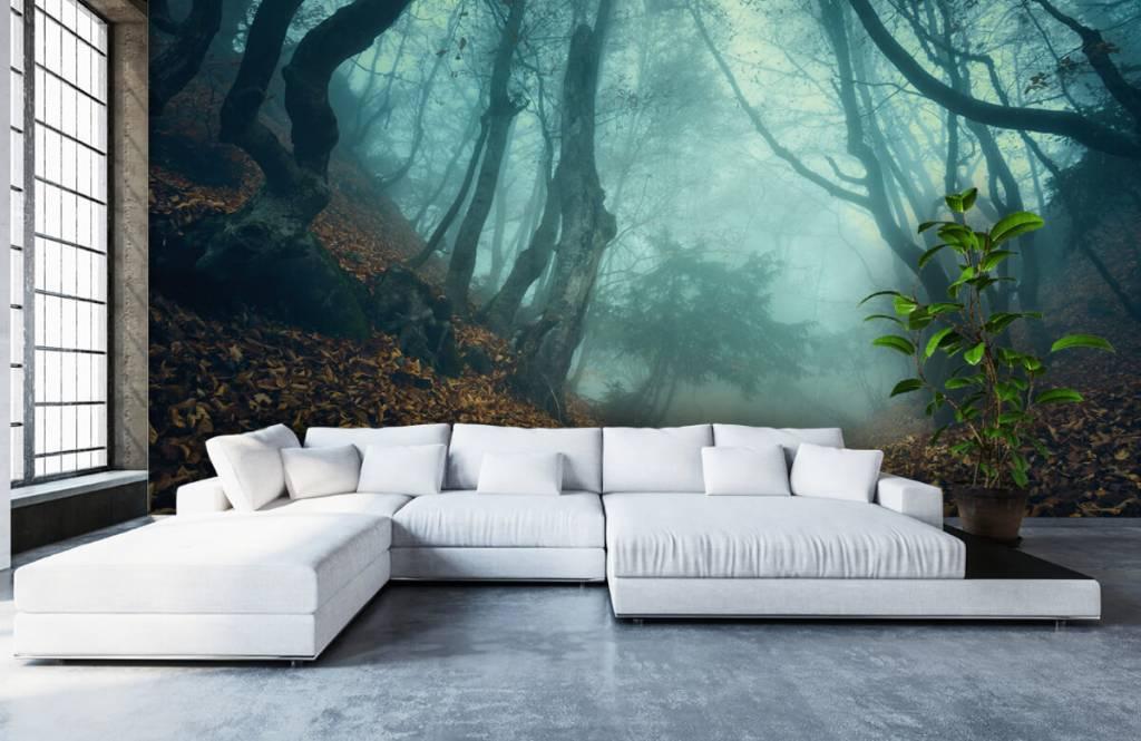 Papier peint de la forêt - Forêt mystérieuse - Chambre à coucher 1