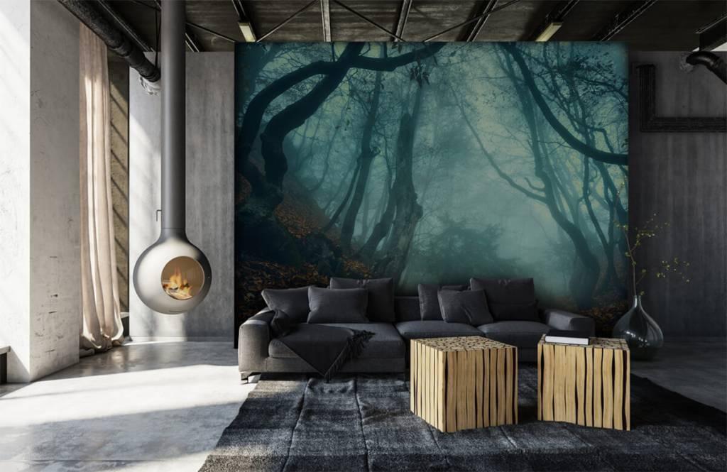 Papier peint de la forêt - Forêt mystérieuse - Chambre à coucher 6